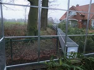 Volierenbau monningvolierekafiggehegevolierenbau for Französischer balkon mit vogelvolieren für den garten selber bauen