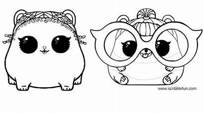 Lol Coloring Pets Pages Printable Surprise