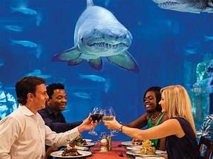7 Underwater Restaurants and Bars Around the World ...