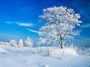 Dicke Vorhänge Kälteschutz : ranking der sch nsten fotomotive im winter ~ Michelbontemps.com Haus und Dekorationen