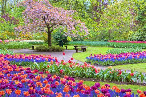 Spring Season Painting By Nadia Sanowar