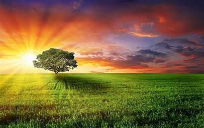 Windows Wallpapers Hq Sunshine Background Nature Sun