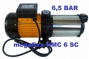 Profi Hauswasserwerk Test : hauswasserwerk megafixx s6 50es mit 1350 watt 50 liter ~ Watch28wear.com Haus und Dekorationen