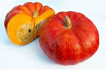 Rouge Vif Heirloom Orange Etampes