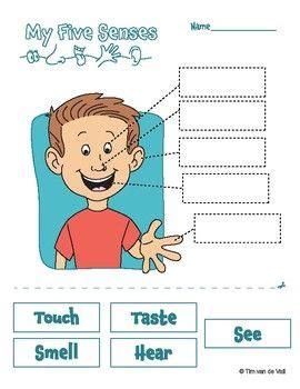 senses worksheets  images  senses