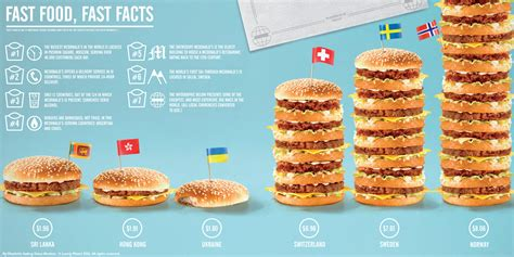 fast cuisine big mac cibo bevande infographics in