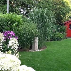 Ziergräser Für Den Garten : die besten 25 gr ser pflanzen ideen auf pinterest ~ Lizthompson.info Haus und Dekorationen