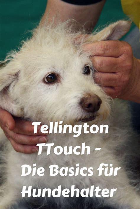 Glueckliche Haustiere Sauberkeit Und Erziehung by Tellington Ttouch Eine Kurzeinf 252 Hrung Puppy Dogs