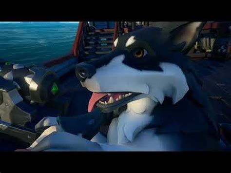 Sea of thieves: Everything you need to know about dogs ...