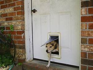 Pet door wikipedia for Dog entry doors
