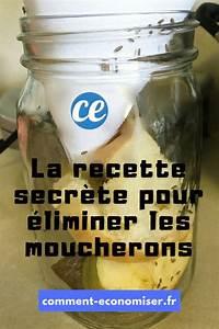 Eliminer Les Moucherons : invasion de moucherons dans la cuisine le pi ge magique ~ Nature-et-papiers.com Idées de Décoration