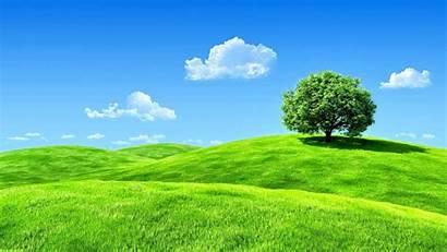 Screen Wallpapers Desktop Nature Sky Landscape Tree