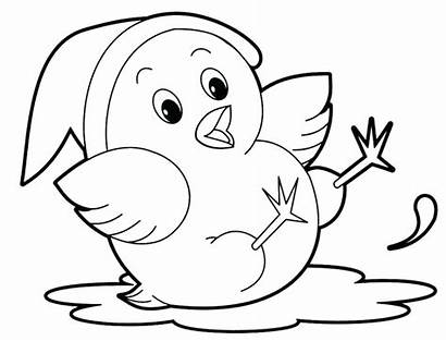 Coloring Animal Pages Bird
