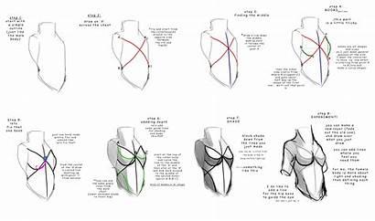 Draw Anatomy Drawing Human Imgur Reference Tutorials