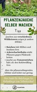 Dünger Selber Machen : d nger selber machen anleitung zum selbermachen von pflanzend nger pflanzen gartentipps und ~ Watch28wear.com Haus und Dekorationen