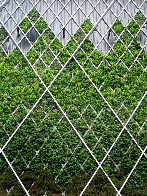 Vertical Garden Facade by Vertical Garden Green Green Facade Wall Design Facade