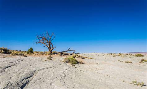 Land Degradation and Desertification - ERA