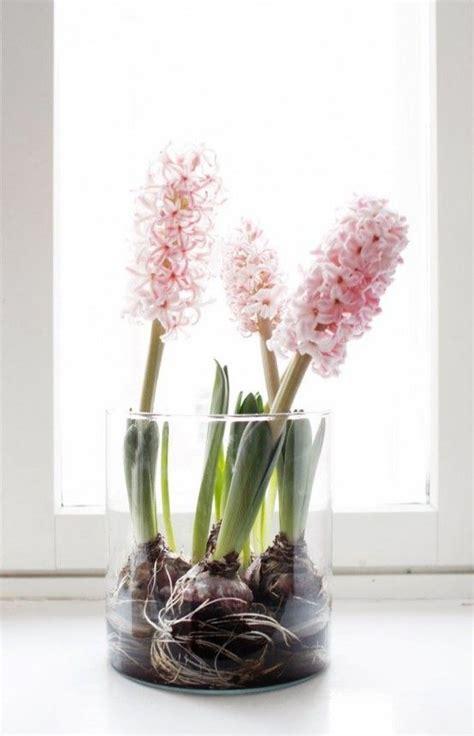 17 meilleures id 233 es 224 propos de bouquet de jacinthe sur