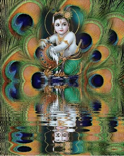 Krishna Lord Radha Janmashtami Indian Wordzz Glories