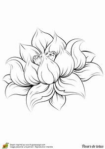 Dessin Fleurs De Lotus : coloriage fleur de lotus realiste sur ~ Dode.kayakingforconservation.com Idées de Décoration