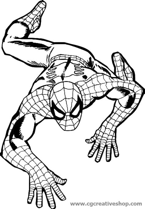 spiderman disegni da colorare  disegni  spiderman da