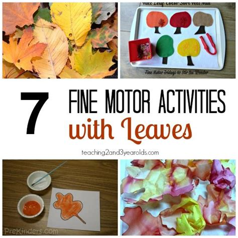 fall motor activities for preschoolers childcare 538 | fc930fd371564d71c06cbfac2a183cd0