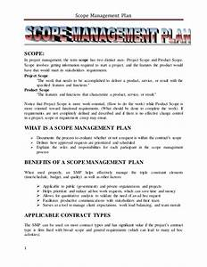 stress management plan essay