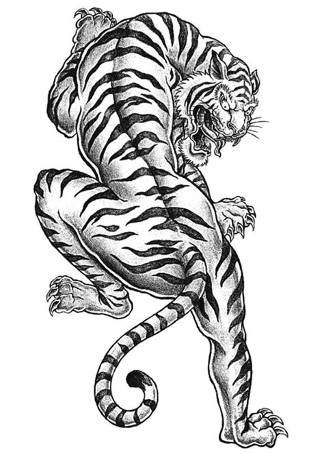 free tiger coloring page to print adult coloring pages