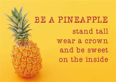 zintenz postcard   pineapple
