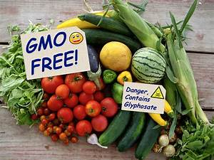Is Gmo