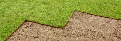 how much does grass cost what is the price for garden turf turf online