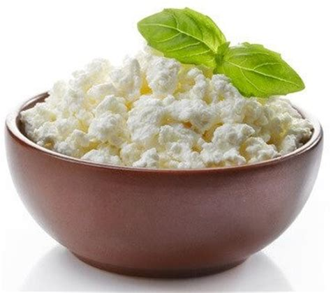 cottage cheese protein list of 25 high protein foods vegetarian non vegetarian