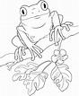 Frog Clip Art 081510» Vector Clip Art - Free Clip Art Images