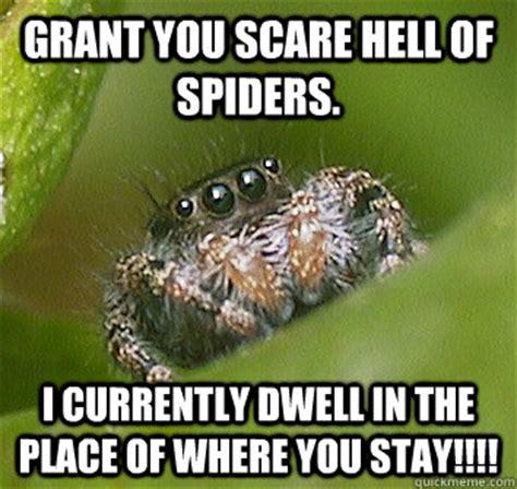 Memes About Spiders - spider corner meme memes