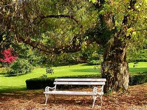 27 best Bench Please!!! images on Pinterest