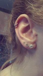 Double Helix || Tragus || Double Cartilage Hoops || Triple ...