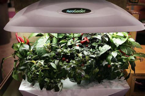 indoor garden kits   herb lover