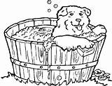Coloring Bathtub Dogs Bath Tub Dog Clipart Printable Drawing Graphics Washing Animal Cliparts Animals Animated 2009 Puppy March sketch template