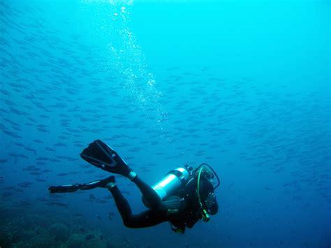 diving nautilus plong 201 e