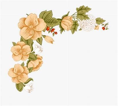 Border Flower Frame Floral Transparent Clip Clipart