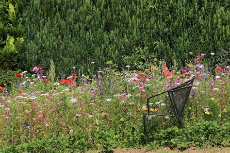 Naturgarten Planen Anlegen Und Gestalten by Naturgarten Selbst Anlegen Planung Gestaltung Und Pflanzen