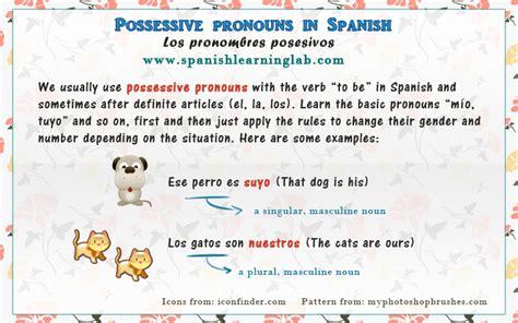 Spanish Possessive Pronouns Chart & Sentences Spanishlearninglab