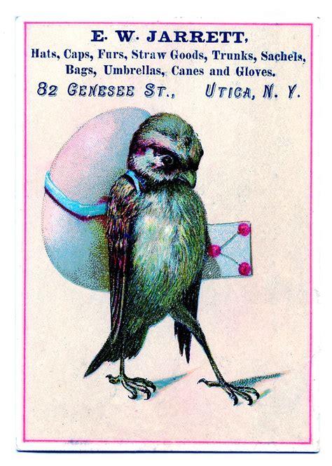 vintage clip art funny bird  giant egg