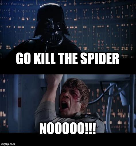 Killing Spiders Meme - killing spider meme pictures to pin on pinterest pinsdaddy