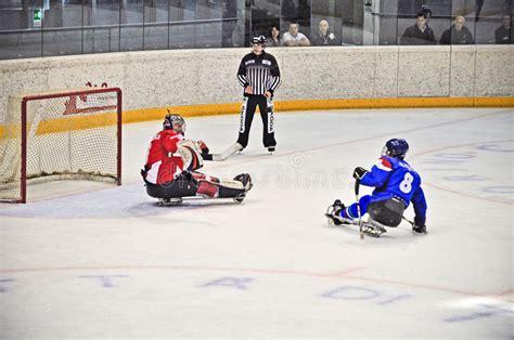 Hokeja lodu saneczki fotografia editorial. Obraz złożonej z czech - 23631942