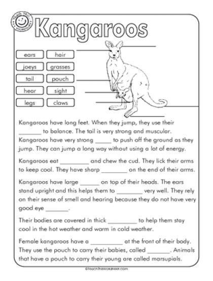 kangaroo label and cloze education cloze activity