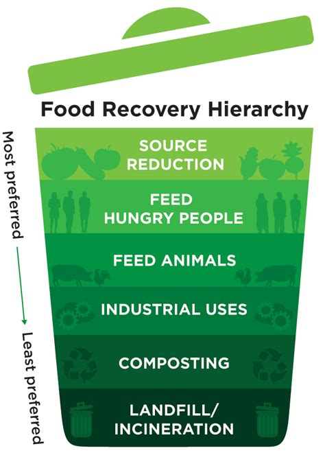 hierarchie cuisine sustainability beyond the plate the foodservice
