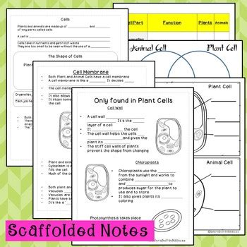 plant  animal cells powerpoint lesson  note