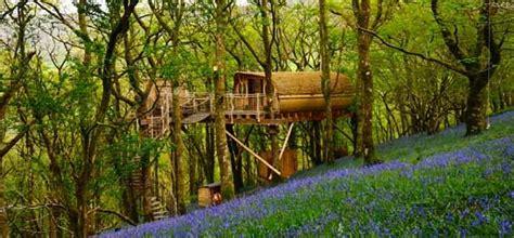 Living Room Treehouses  Powys  Canopy & Stars