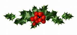 Clipping Path, Branch of Holly, design element, isolated